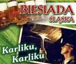 Biesiada Śląska