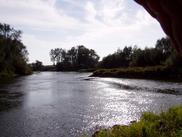 Zakola rzeki Odry