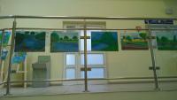 Galeria Plener malarski w Przewozie