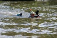 Pływadła 2008