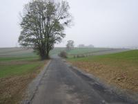 Droga Łany-Podlesie