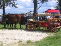 Przygotowanie zaprzęgu konnego